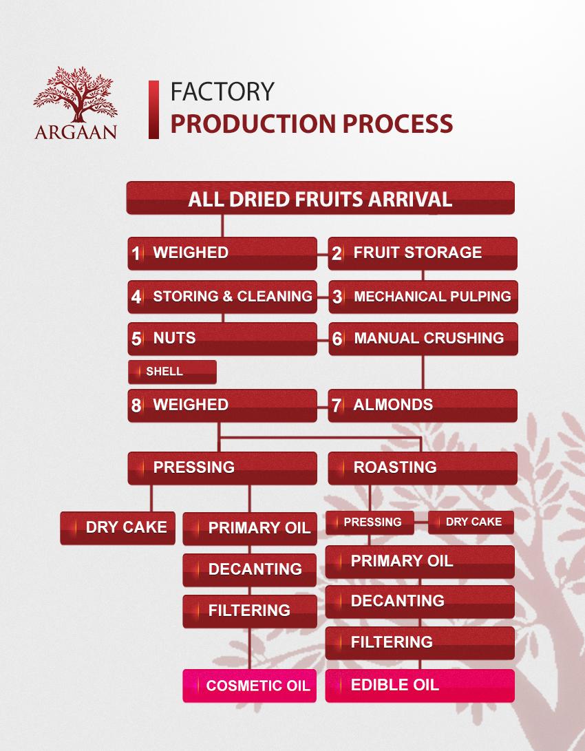 Argaan Factory Process to make Argan Oil